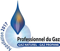 Profesionnel du gaz